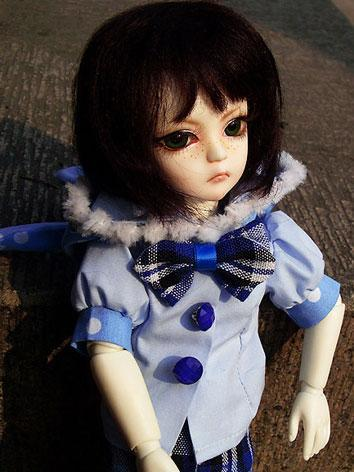 BJD Leng 27cm Boy Ball-join...