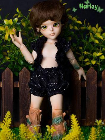 BJD Harley 26cm Boy Ball-jointed Doll