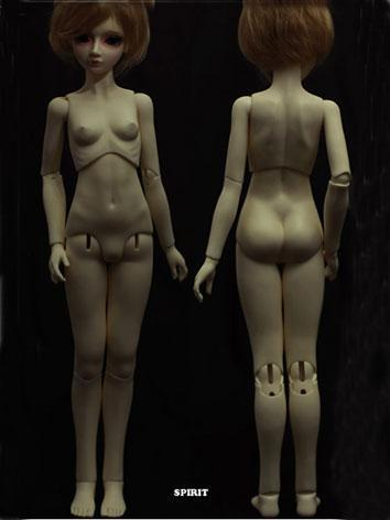 BJD 56.5cm Female Jointed Torso Body Ball Jointed Doll
