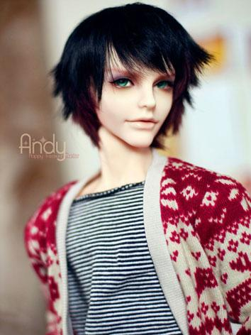 BJD Limited Edition Andy - ...