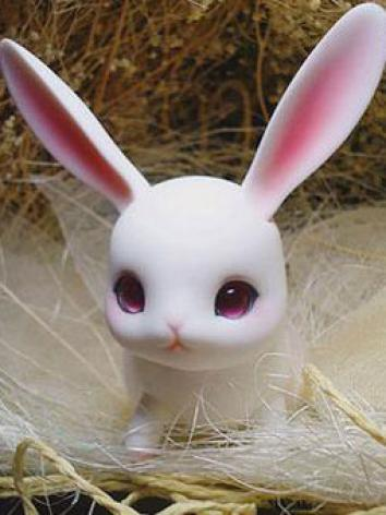 BJD's pet Ruby Ball-jointed...