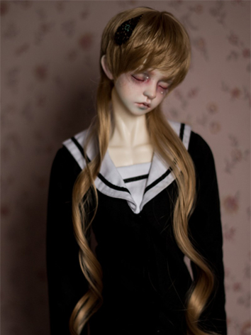 BJD Male/Female Brown Long Hair Wig for SD Size Ball ...