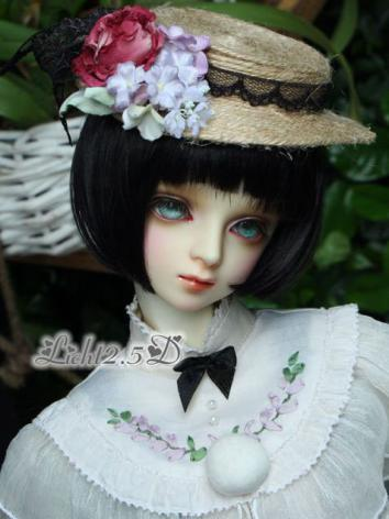 1/3 1/4 1/6 Wig Boy/Girl Short Hair[M2-2] for SD/MSD/YSD Size Ball-jointed Doll