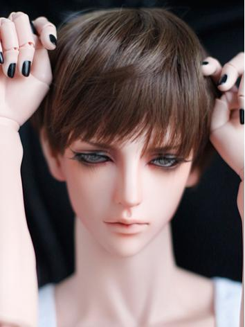 1/3 Wig 9-10inch Boy Dark Brown Short Hair A04 for SD/70cm Size Ball-jointed Doll