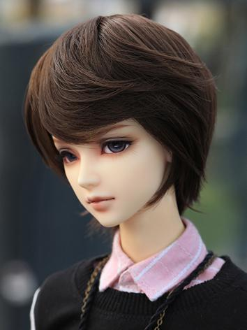 BJD 1/3  Black & Brown Pers...