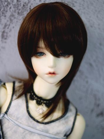 BJD Wig Boy/Girl Dark Brown...
