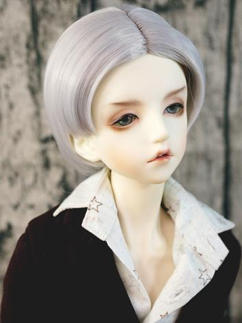 BJD Wig Boy Silver White Ha...