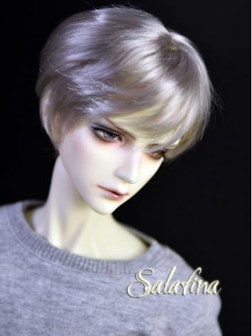 BJD Wig Boy Silver/Gold/Chocolate/Beige Short Hair for SD/MSD/YSD Size Ball-jointed Doll
