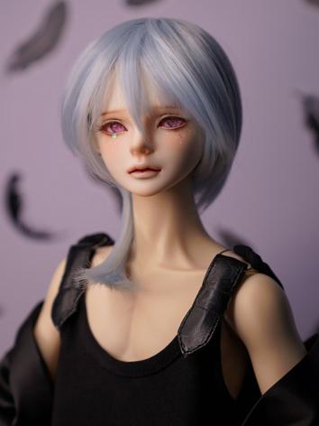BJD Wig Boy Blue Hair for S...