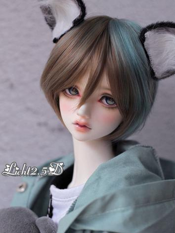 BJD Wig Boy Green/Blue Hair...