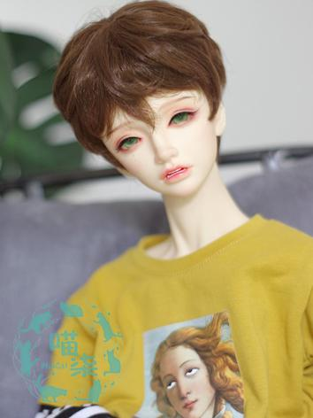BJD Wig Boy/Girl Brown/Gold...