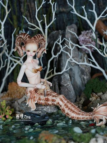 12% OFF Time Limited BJD Go...