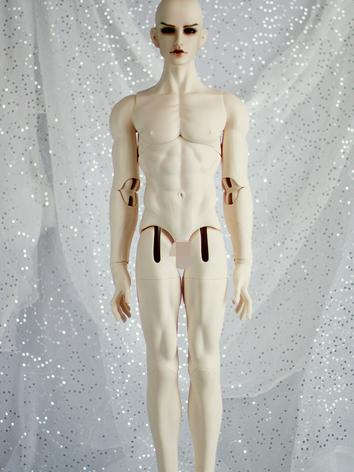 BJD Nude Body 75cm Muscle Male Body Boll-jointed doll
