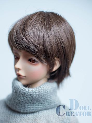 BJD Wig Boy/Girl Brown Shor...