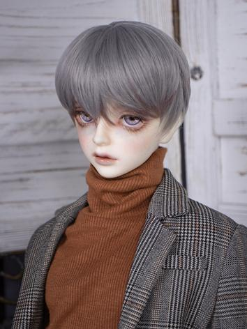 BJD Wig Boy/Girl Black/Gray...